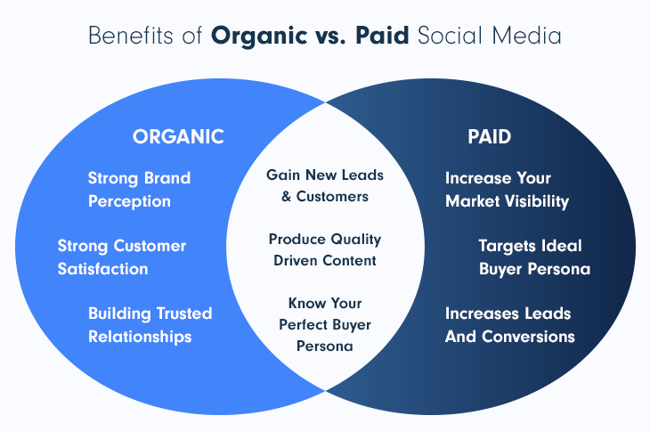 Benefits of organic vs paid social media for a SaaS business and marketing strategy